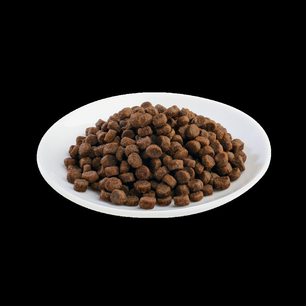 Shelma -  Croquettes Sans Céréales riches en dinde Chaton - 750gr