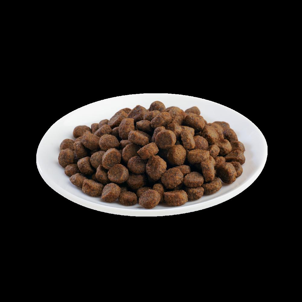 Shelma -  Croquettes Sans Céréales riches en poulet Chat adulte - 750gr